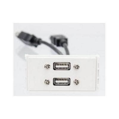 VivoLink Outlet Panel 2 + USB2.0, White Wandcontactdoos - Wit