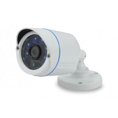 Conceptronic CCAM1080FAHD Beveiligingscamera - Wit
