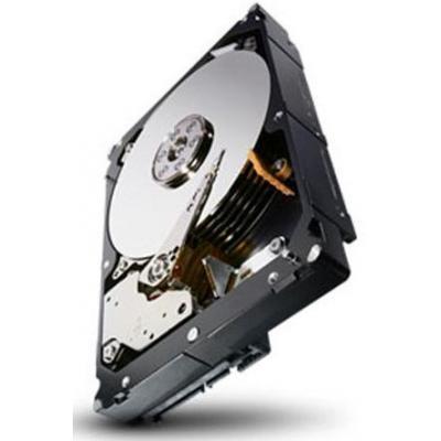Seagate 1TBGB SATA, 7200rpm Interne harde schijf - Refurbished ZG