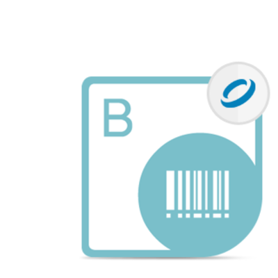 Aspose .BarCode for JasperReports - Developer Small Business - 1 Developer and 1 Server - Windows - Perpetual - .....