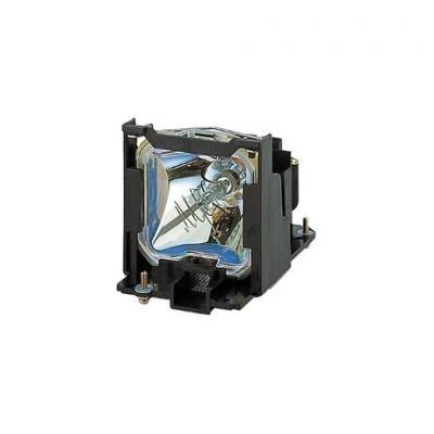 Optoma Projector Lamp for DS349/DS441/DW349/DX349/DX441/S341/W340/W341/X341/X344 with Module Projectielamp