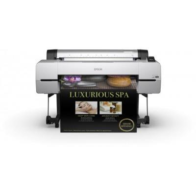 Epson grootformaat printer: SureColor SC-P10000 - Zwart, Grijs