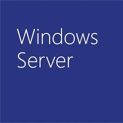 Microsoft Windows Server Standard 2019, OLP Software licentie