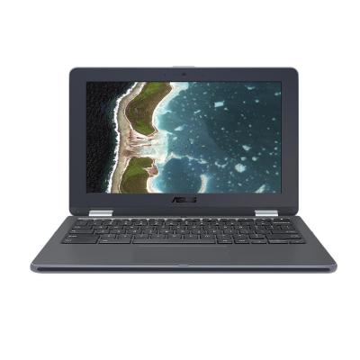 Asus laptop: Chromebook C213NA-BW0026 - Grijs