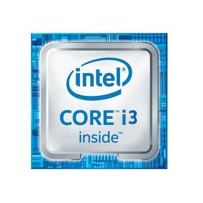Dell processor: Intel Core i3 6100