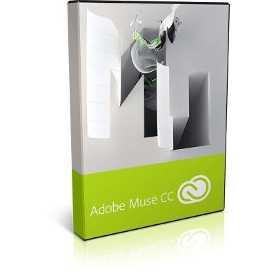Adobe 65227382BA13A12 grafische software