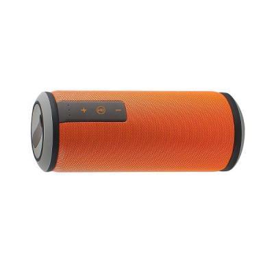 Ewent AC0001 draagbare luidspreker