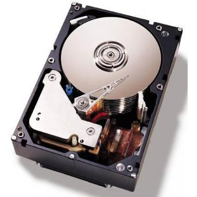 "Ibm 500GB SATA 3.5"" interne harde schijf"