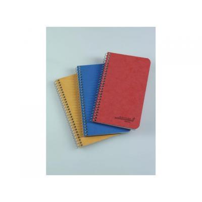Aurora register: Notitieboek 50bl 80x135 ruit spir/pk 20