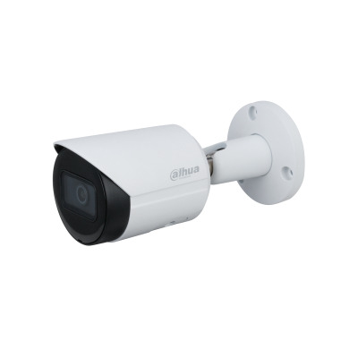 Dahua Technology IPC-HFW2431S-S-S2 IP-camera's