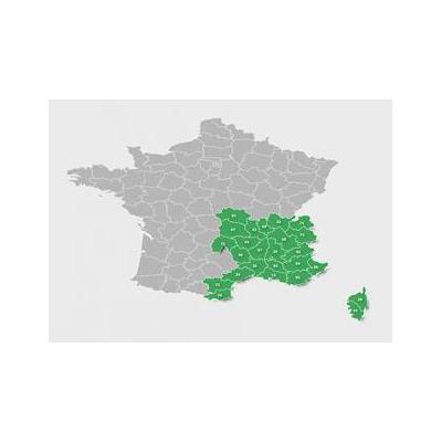 Garmin : TOPO France v4 PRO - South-East, microSD/SD