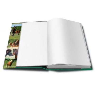 Herma tijdschrift/boek kaft: 21260 - Groen