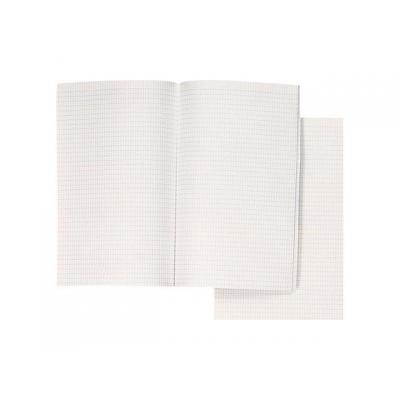Aurora tekenpapier: Papier Minister dubbel ruit/pak 240v