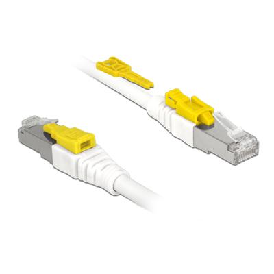 DeLOCK Cat.6A, S/STP, RJ45, 26 AWG, LS0H, 0.5 m Netwerkkabel - Wit