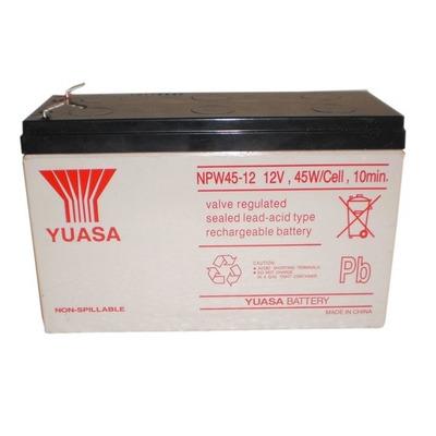 2-Power NPW45-12 UPS batterij