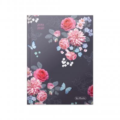 Herlitz 50022601 - Blauw, Roze, Violet