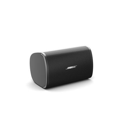 Bose DM2S Speaker