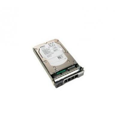"""DELL 300GB SAS 6Gb/s 6.35 cm (2.5"""") Hot-Plug interne harde schijf"""