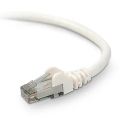 Belkin netwerkkabel: CAT6 STP Snagless Patch Cable