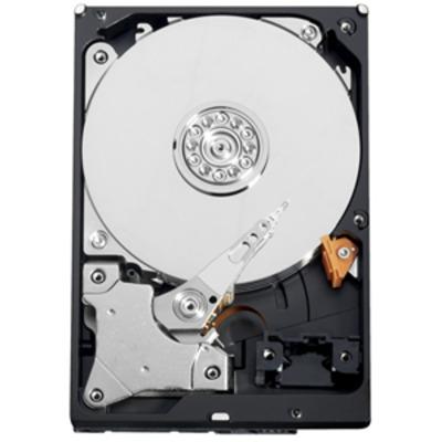 "Western Digital AV-GP 500GB 5400rpm 3,5"" SATA Interne harde schijf"