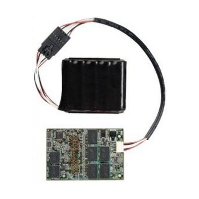 IBM Express ServeRAID M5100 Battery - Zwart