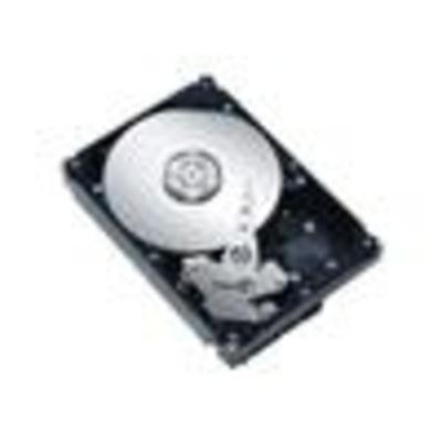Fujitsu S26361-F3660-L100 interne harde schijven