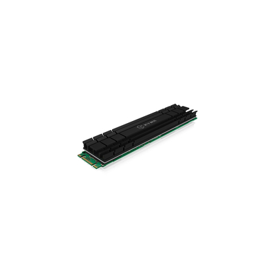 ICY BOX IB-M2HS-1001 Hardware koeling - Zwart