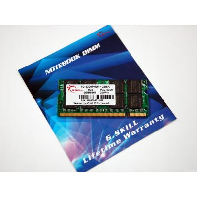 G.Skill F2-5300PHU1-1GBSA RAM-geheugen