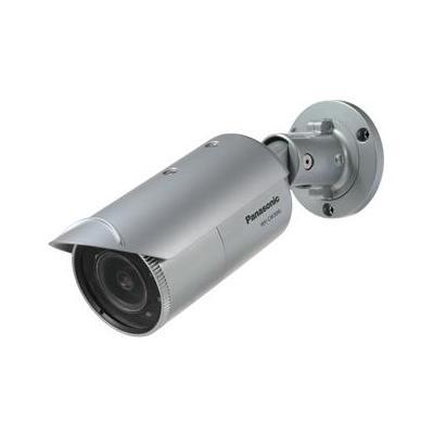 Panasonic 1/3 CCD, IP66, water dust and weather resistance Beveiligingscamera - Zilver