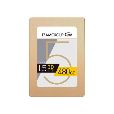 Team Group L5 LITE 3D SSD - Goud