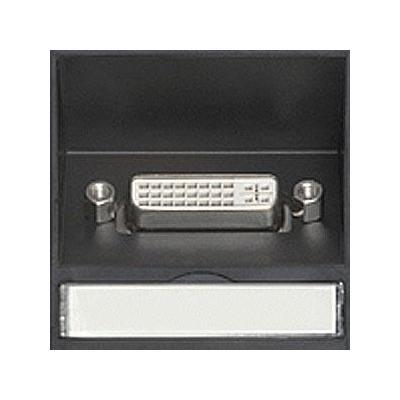 Kindermann DVI-D Module, 50mm, 3m Digitale & analoge i/o module - Zwart