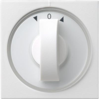 GIRA 066603 Veiligheidsplaatjes voor stopcontacten