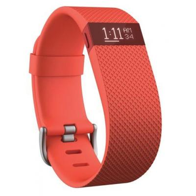 Fitbit FB405TAL wearable