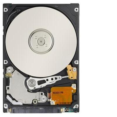 Acer interne harde schijf: 500GB SATA Hard Drive