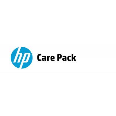 Hewlett Packard Enterprise U4JU2E IT support services