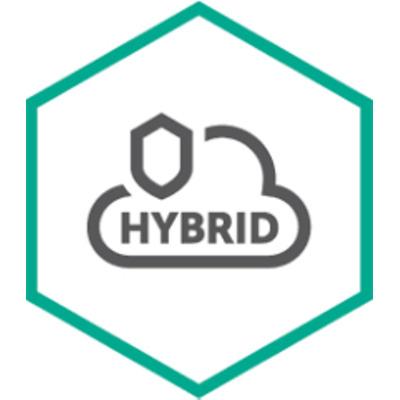 Kaspersky Lab Hybrid Cloud Security for Desktop Software licentie