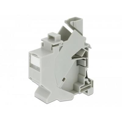 Delock Keystone Mounting for DIN rail with dust cover
