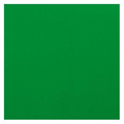 Gbc binding cover: HiGloss Bindomslagen 250 grams Groen (100)