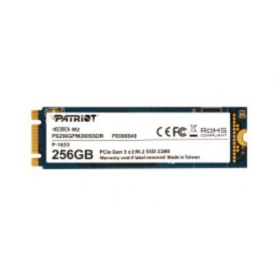 Patriot Memory PS256GPM280SSDR SSD
