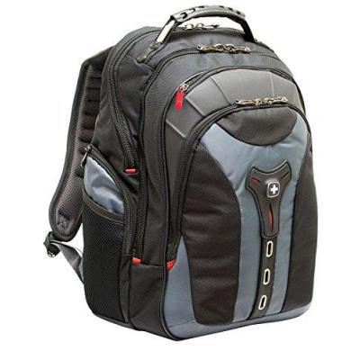 "Wenger/swissgear laptoptas: PEGASUS 43.18 cm (17"") Laptop Backpack with Tablet / eReader Pocket, Black / Grey - Zwart, ....."