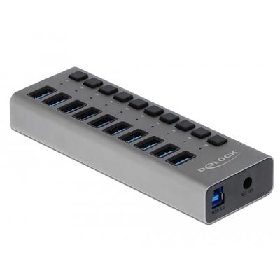 DeLOCK 10 x USB 3.0 Type-A, 1 x USB 3.0 Type-B, 1 x 12 V DC, 150 x 53 x 23 mm, grey Hub - Grijs