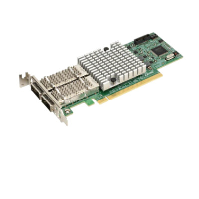 Supermicro AOC-S100G-M2C-O interfacekaarten/-adapters