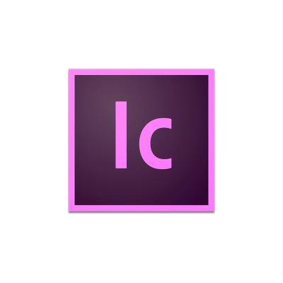 Adobe 65272669BA02A12 software licentie