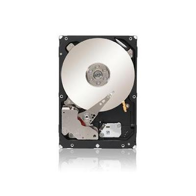 Seagate ST33000650NS-RFB interne harde schijven
