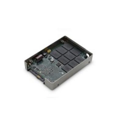 Western Digital Ultrastar1000MR SSD - Zilver
