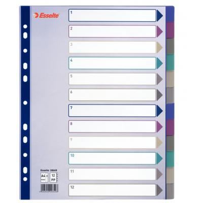 Esselte schutkaart: tabblad, PP, A4 extra breed - Multi kleuren