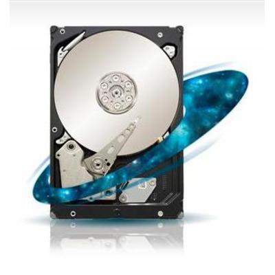Seagate ST33000651SS-RFB interne harde schijf