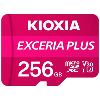 Kioxia Exceria Plus Flashgeheugen - Roze, Wit