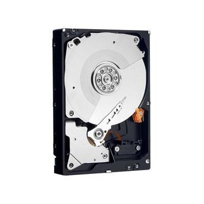 Western Digital RE3 750GB Interne harde schijf - Refurbished ZG