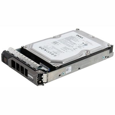 Dell 2TB NL-SAS interne harde schijf